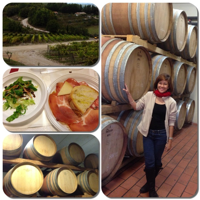 We tasted different kinds of wine and ate a delicious Tuscan lunch in Chianti, the famous wine region in Tuscany.